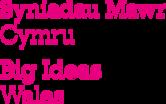 Big Ideas Wales