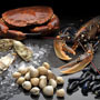 Seafood Clusters