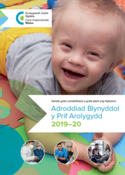 annual report cover welsh