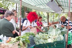 Walthamstow Farmers Market veg stall