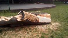 Cheney Row Park Chainsaw carver
