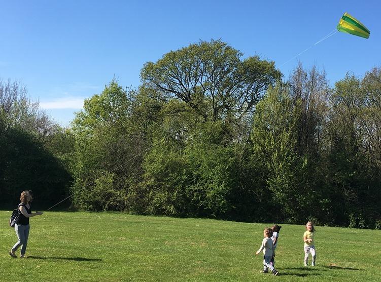 Kite flying at Pimp Hall Park