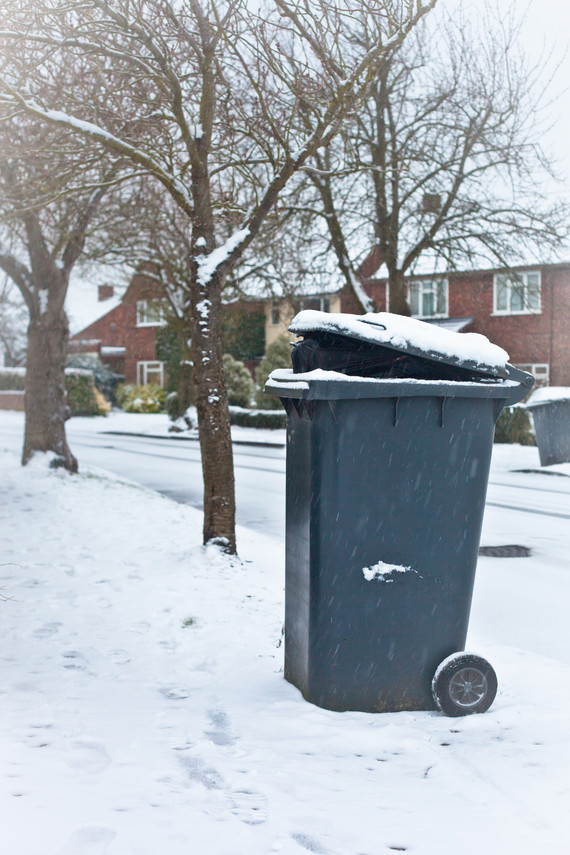 Winter bin