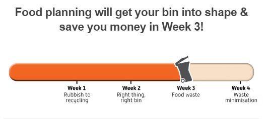 Slim Your Bin progress