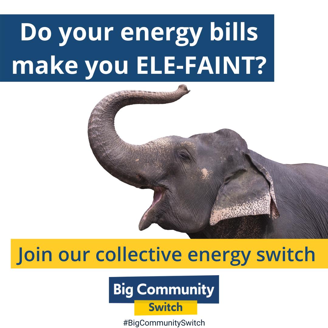 Energy Switch Elephant Image