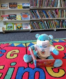Libraries Bear
