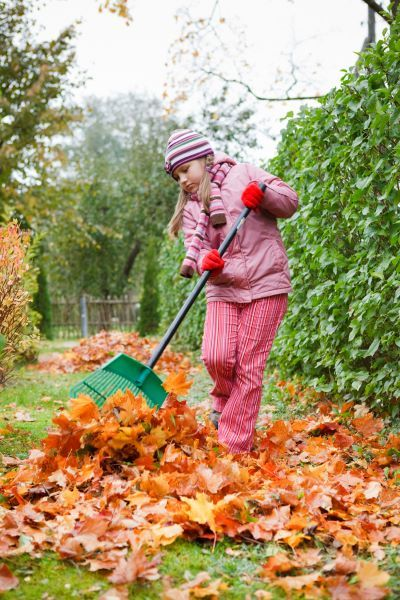 Girl clearing autumn leaves
