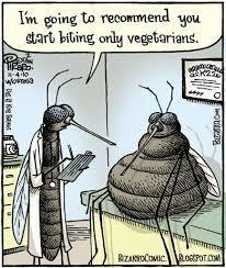 Mosquito comic