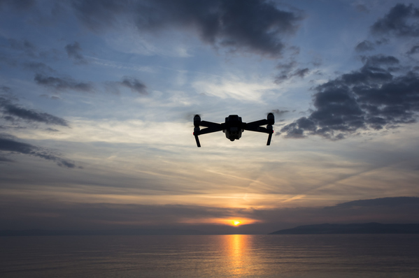 Drone Hobbyist