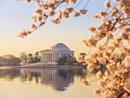 Image of the Jefferson Memorial in Washington DC