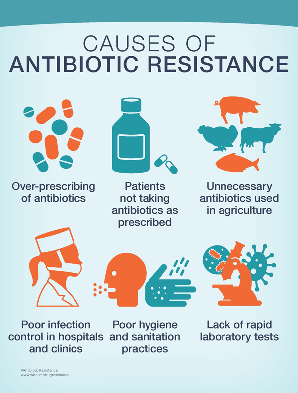 Image result for image of antibiotic resistant
