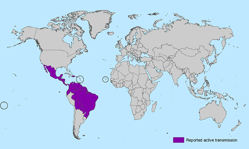 Zika outbreak map