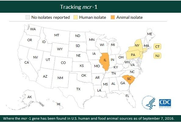 Tracking the mcr-1 gene