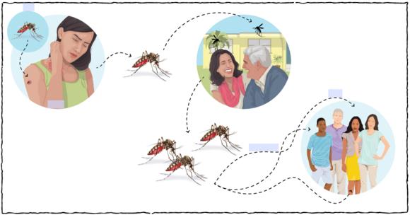 Zika Flipbook