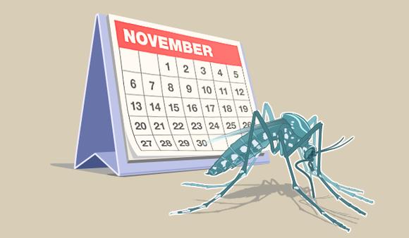 mosquito and a calendar