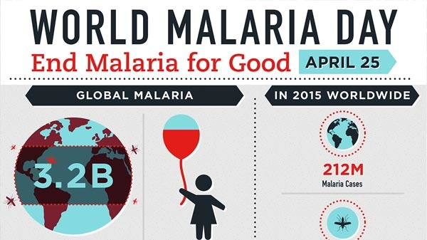 World Malaria Day Infographic