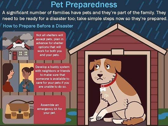FEMA pet preparedness infographic