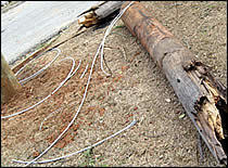 downed, broken utility pole