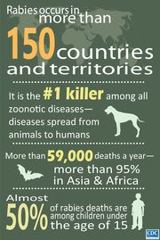 Rabies Infographic