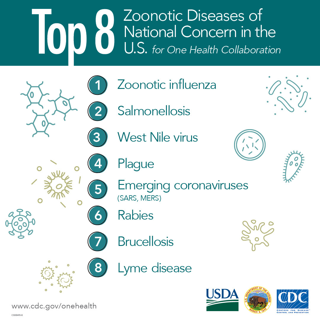 Top 8 zoonotic diseases of national concern in the US