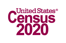 Census 2020 (Registered)