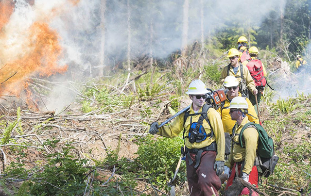 Firefighters walk the fire line during training to respond to wildfires on DNR land near Hamilton, WA. (Photo by Charles Biles/Skagit Valley Herald)