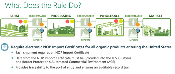 Requiring import certificates