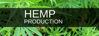 Hemp Production Logo