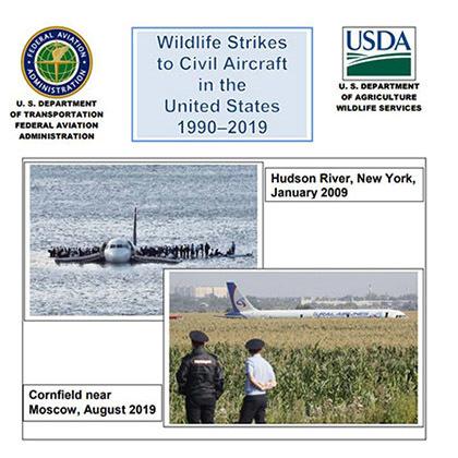 Wildlife Airstrikes