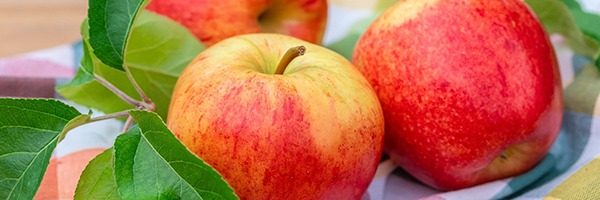 up-close photo of apples