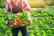 Produce Safety