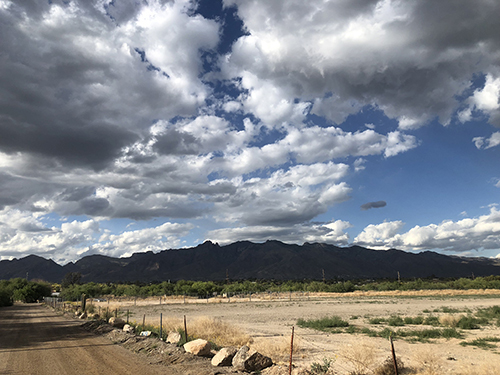 Santa Rita Experimental Range