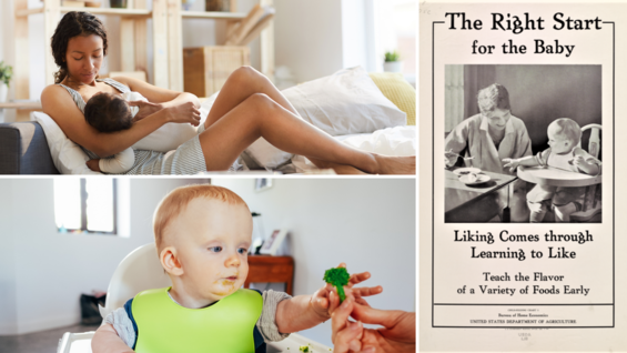 A collage of a mother breastfeeding her baby, an infant reaching for a piece of broccoli, and a historical infant nutrition poster.