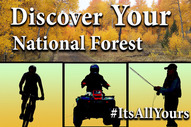 Discover your national forest