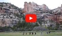 Dark Canyons YouTube Video