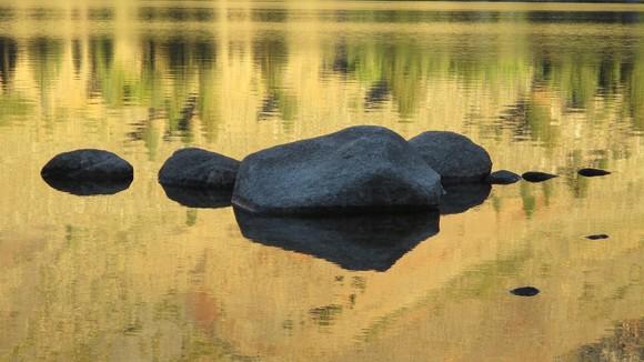 Humboldt-Toiyabe National Forest September Newsletter