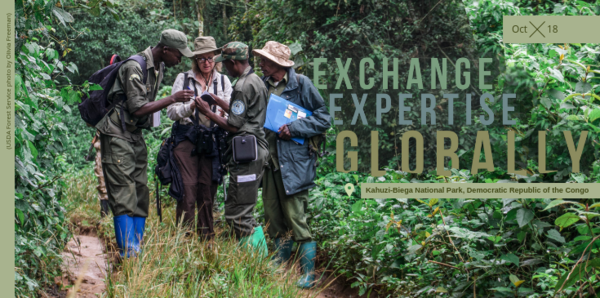 October is all about sharing expertise globally.