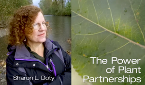 Sharon Doty Power of Plant Partnerships