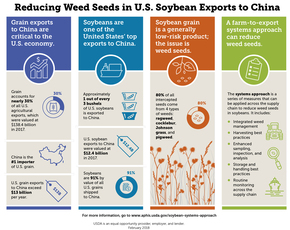 Systems Approach for Soybeans