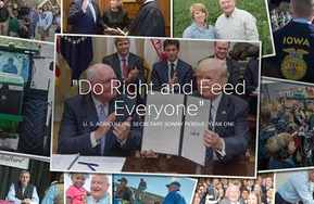 Do Right Feed Everyone Year One image