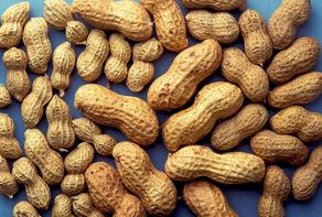 Peanut image by Jack Dykinga.