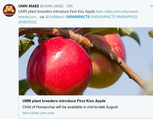 Fresh from the Field NIFAImpacts UMN First Kiss Apple