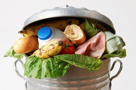 Fresh from the Field NIFA Impacts Food Waste USDA photo