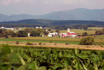 Harvest time on the farm, Augusta County, VA. USDA Photo by Bob Nichols