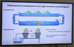 Aquaponic and hydrophonic workshop graphic image
