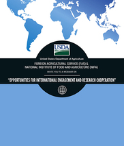 International Engagement and Research Cooperation graphic image