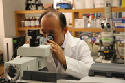 Dr. Menshi Lin uses spectroscopy to detect foodborne contaminants in fresh produce. University of Missouri photo.