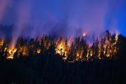 California Wild fire. Photo by US Forest Service.