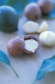 Cotton IPM Saves Millions. Macadamia nut photo by USDA. NIFA Impacts.