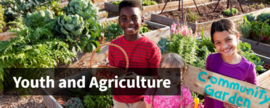 USDA Youth and Agriculture website graphic